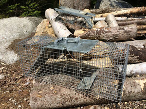 2 Hav-a-Heart live catch and release traps