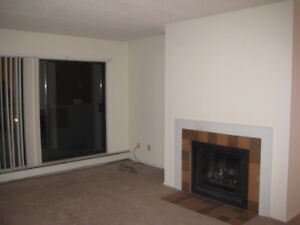 1 Bedroom Apartment near Lansdowne Mall
