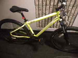 Norco Indie 3 2015 *glows in the dark* neon green Cambridge Kitchener Area image 2