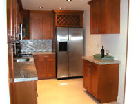 BEAUTIFUL CONDO ON THE BEACH! AVAILABLE NOW! HOLLYWOOD, FLORIDA