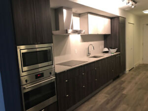 High end Brand New Epic @ West.  Olympic Village + Parking