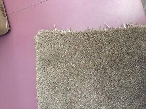 Approx 1000 sq ft carpet