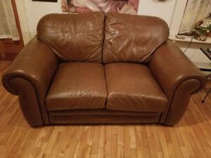 Mobilier de salon (causeuse et fauteuil) en cuir brun.