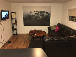 Furnished Basement Suite Available October 1