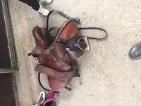 Used horse saddle