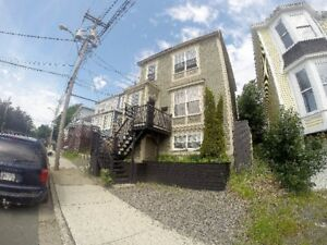 Beautiful registered executive 2-apartment home down town