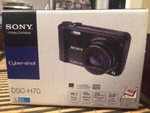 Sony Cyber-Shot DSC-H70 Camera (NEW)