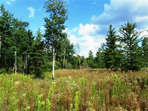 Acreage, 5 minutes South of Meadow Lake