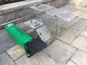 Animal Traps for rent - Skunk/Racoon/Hare/Cat/Squirrel/Etc.