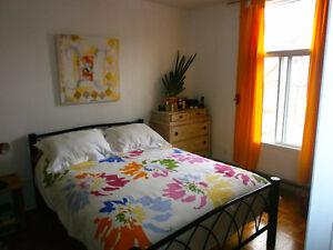 Superbe apartement 5 1/2  - Petite Italie