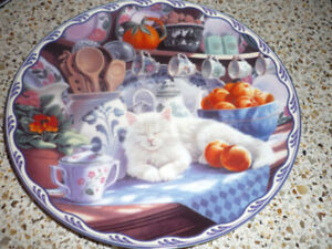 Cat Collector Plate