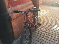 Apollo men's bike