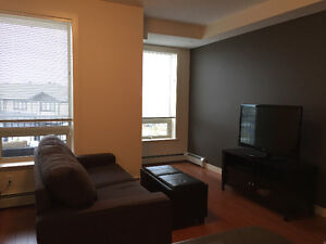 Fully Furnished and Pet Friendly Condo in Quiet Neighbourhood