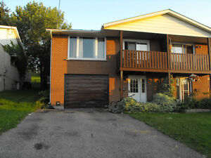 Room for rent in 3 bedroom house - female only Kitchener / Waterloo Kitchener Area image 1