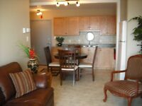 Newer Waterview furnished suites/Blue Rock Court,