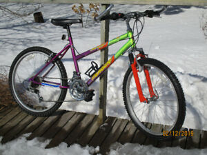 Girls 18 Speed Mountain Bike