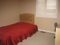 SECOND FLOOR ROOM TO RENT IN RICHMOND HILL