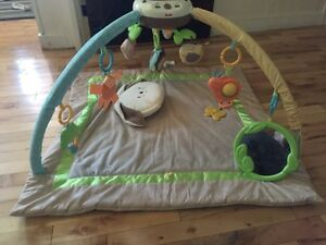Fisher Price infant play mat