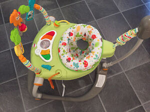 BRAND NEW CONDITION jumperoo (Fisher Price) used twice only