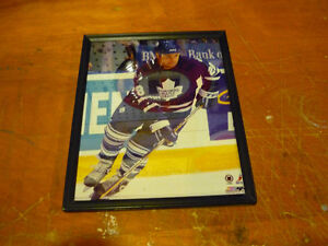 Toronto Maples Leafs Tie Domi Framed Picture