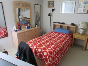 ROOM FOR RENT – Fully Furnished Apartment.