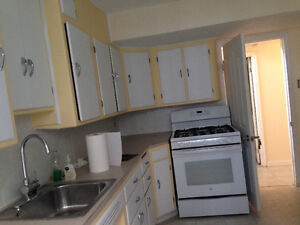 Bright, Spacious basement on 109 St- All inclusive
