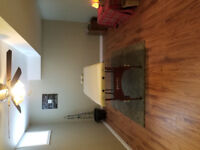Holistic treatment/therapy room for rent