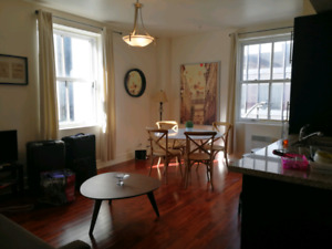 3 1/2 full furnished condo old port ville marie