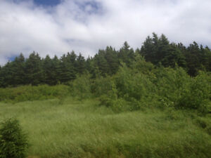 Ocean view lot located in Harcourt, near town of Clarenville!