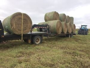 Good quality round bales 1350+lbs