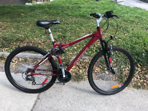 Red Infinity Mountain Bike For Sale