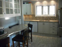 Kitchen refacing and painting