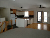 5 bedroom fully finished pet friendly house, large private lot