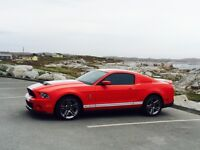 2010 mustang shelby gt500