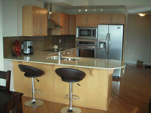 Whyte Ave Glass Curtain Wall 2B/2B Exec Furnished Apt Home