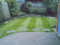 Glasgow/ Lanarkshire garden tidy ups