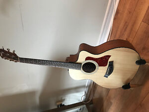 Beautiful Taylor 6 String Acoustic