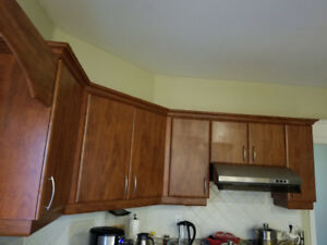 Kitchen and Washroom Cabinet  For $300