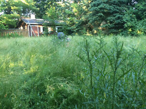 Professional lawn cutting. Small lots to several acres Cambridge Kitchener Area image 9