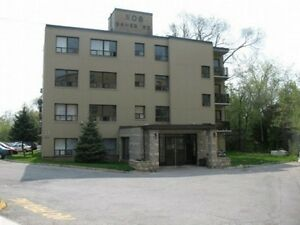 Apartments For Rent In Cambridge Ontario Kijiji