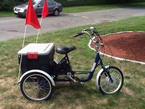 Bycicle  3 roues électrique      450.472.2108