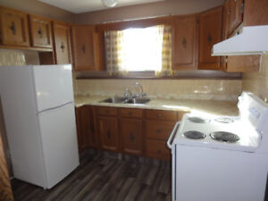 1 bedroom suite - Available September 1, 2018