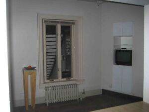 1 bedroom, downtown Galt Cambridge Kitchener Area image 3