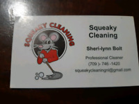 Squeaky cleaning