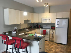 2 Bedrooms fully furnished condo - downtown - Available May 1st