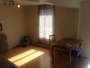 Room Available in Sunny Plateau Apartment, May and June