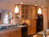 Home Improvement Services (Kitchens, showers, flooring, drywall)