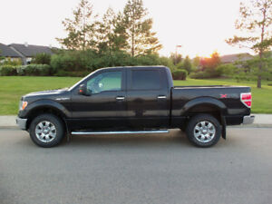 2014 Ford F-150 Super Crew  XLT XTR 4X4 5.0 L ORIGINAL OWNER