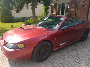 2003 Mustang Convertible Only $3,499 cash!