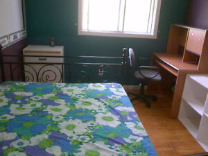 Student room for rent all inclusive, 4-month lease minimum Kitchener / Waterloo Kitchener Area image 3